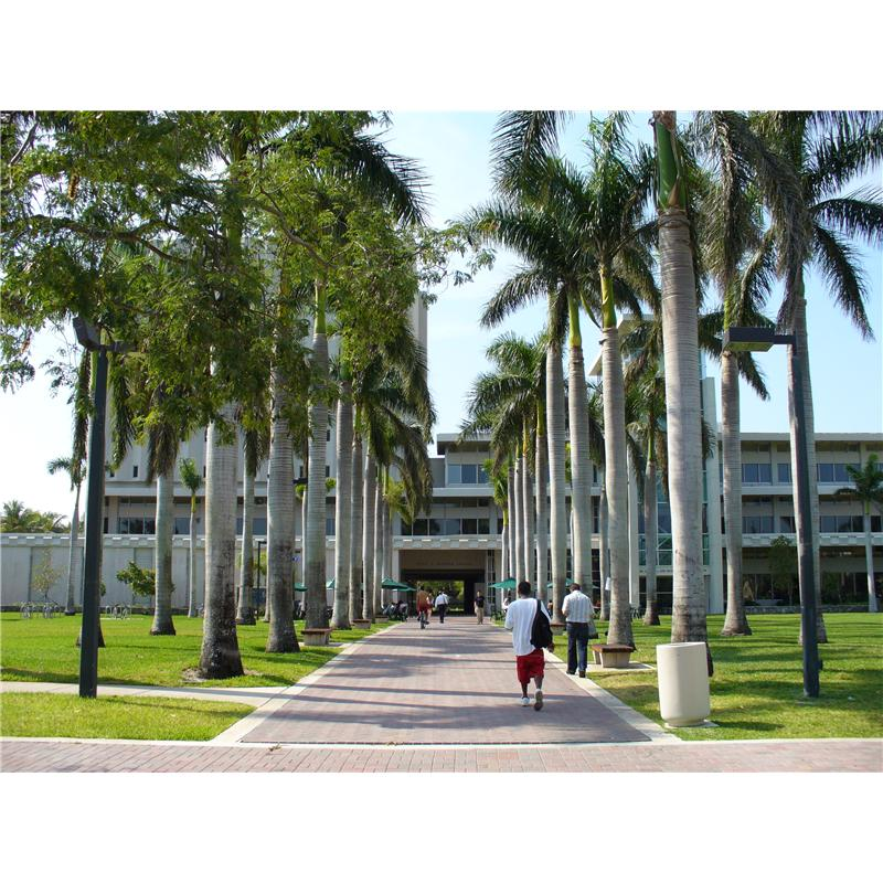 University of Miami picture.