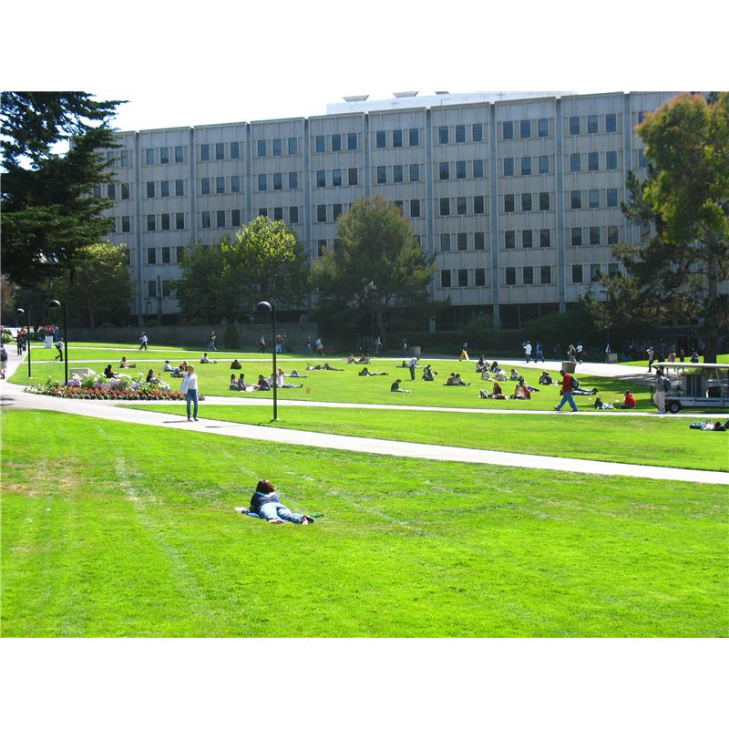 San Francisco State University picture.