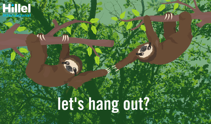 lets hang out sloth